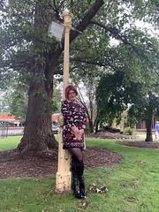 Cece 131219 (1) (rjrgmc28) Tags: adorkable black boots dork dress eyewear geek girl glasses pantyhose stockings tights transgender woman aspergirl