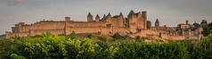 Carcassonne 19-100 (snellerphoto) Tags: aude carcassonne citédecarcassonne france occitan southwestfrance unesco occitanie toulouse occitane