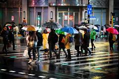 Umbrellas (josephteh) Tags: shanghai street umbrella colourful rainy rainning nightlife crossing china sony rx100 raincoat