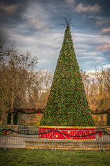 Christmas Tree in Dogwood Park (donnieking1811) Tags: tennessee cookeville dogwoodpark christmastree outdoors trees sky clouds blue hdr canon 60d lightroom photomatixpro