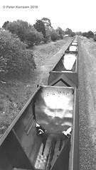 train on the Unanderra line (alden0249) Tags: blackandwhite bw minimal train vanishingpoint
