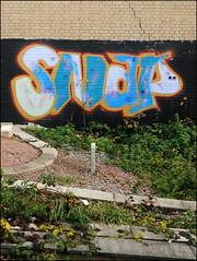 Snap (Alex Ellison) Tags: snap trackside railway northwestlondon urban graffiti graff boobs
