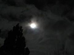 Morgenmond-13-12-19 (1) (thobern1) Tags: mond moon luna lune dezember december