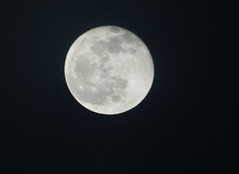 PC122211aacrop (Pussreboots) Tags: moon fullmoon 2019