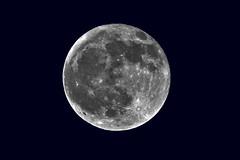 Der Mond über Wanne-Eickel (Michael Döring) Tags: gelsenkirchen bismarck vollmond moon liune lune luna tc20eiii afs600mm40e d850 michaeldöring