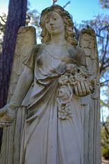 (K e v i n) Tags: bonaventurecemetery savannah georgia ga grave angel