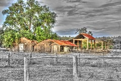 Two sheds. (Ian Ramsay Photographics) Tags: mounthunter newsouthwales australia passingparade years weathered sheds dairy storm drought flood fire witnessed history monochrome colour tree green rural farm fence rusty roof