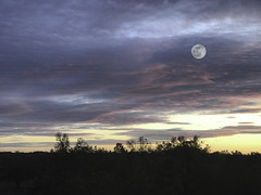 mysterious sky (zd90) Tags: mysterious colorful sky moon compositephoto