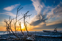 The Big Sky (Neil Cornwall) Tags: 2019 canada lakeerie october ontario pointpelee fall sunset