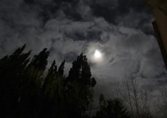 Morgenmond-13-12-19 (2) (thobern1) Tags: mond moon luna lune dezember december