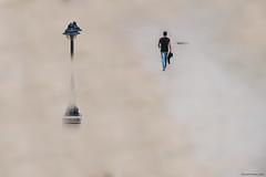 Contrastes - Contrasts (ricardocarmonafdez) Tags: imaginación edición effect processing people urbanshot color nikon d850 farola lamppost niebla mist fog minimalist minimalismo blur