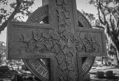 (K e v i n) Tags: bonaventurecemetery savannah georgia ga grave cross blackandwhite