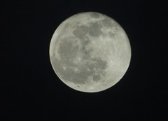 PC122206aacrop (Pussreboots) Tags: moon fullmoon 2019