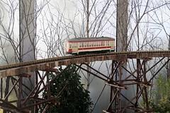 holiday train show 2019, 12/12/19 (hollow sidewalks) Tags: nyc newyorkcity newyorkbotanicalgarden bronx nybg holidaytrainshow hollowsidewalks modeltrains holidays plant plants holidays19 holidays2019 botanicalgardens