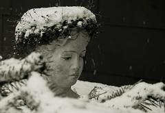 Pelzhut (Fay2603) Tags: winter inverno hiver wintertime seasons snow schnee neve nege white black light shadow fujifilm fujixt1 monochrome bandicot
