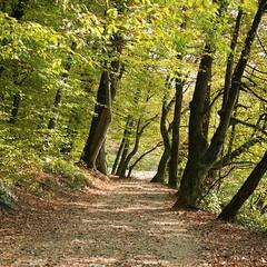 Maksimir Park (Zagreb) (lazyadventurers) Tags: zagreb croatia europe
