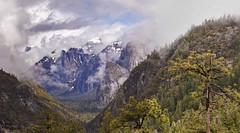 Half Dome (CALandscapeArt natura artis magistra) Tags: yosemite sierranevada california nature wilderness solitude landscape nationalpark yosemitenationalpark californialandscapeart larrydarnell