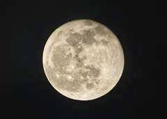 PC122212aacrop (Pussreboots) Tags: moon fullmoon 2019