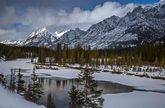 Snow scene (Robert Grove 2) Tags: snow mountains banff canada landscape