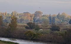 L'automne en Petite Camargue - BFIM9557 (6franc6) Tags: occitanie languedoc gard 30 petitecamargue novembre 2019 6franc6 vélo kalkoff vae
