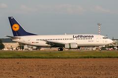 D-ABEF (PlanePixNase) Tags: eddl dus dusseldorf düsseldorf airport aircraft planespotting lohhausen lufthansa boeing 737 737300 b733 733