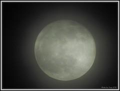 cloudy_full_moon_Dec_2019_002 (truszphoto) Tags: toronto fullmoon moon cloudy nikonp900 handheld