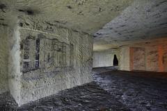 La Bastille (flallier) Tags: carrière souterraine tuffeau underground quarry bastille paris galerie fresque dessin abandoned