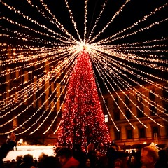 It is nice to stay under the Christmas tree lights 💕🌲 (My colourful world️) Tags: budapest winter christmastree beautiful atmosphere christmasmarket