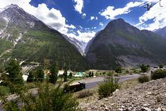 Mountains (Ashokkr Tyagi) Tags: grass flower rock mountains khoksar himachal india