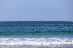 small dolphin pod seen from the shore (wmpe2000) Tags: 2019 sandiego missionbeach beach atthebeach dolphin ships img6409aa