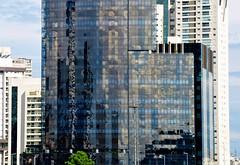 São Paulo... SAMPA! (Ruby Augusto) Tags: sãopaulo sampa brazil brasil prédios reflexos reflection tree árvore buildings