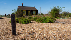 Prospect Cottage (davepickettphotographer) Tags: uk england english britain countryside outside derekjarman prospectcottage shingle beach dungeness headland spit shipley englishchannel garden gardens film director writers home shore shingleshore coastal landscape landscapes cottage prospect gardening