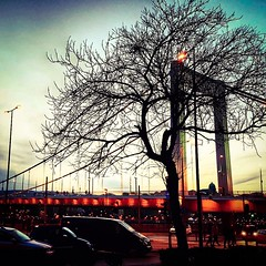 I think that even without leaves is still beautiful this tree 💕 (My colourful world️) Tags: budapest tree elizabethbridge