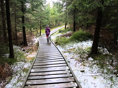 Szlak wzdłuż Vodní nádrž Bedřichov (Olgierd (3rd account)) Tags: jizerskéhory góryizerskie góry mountains pies dog