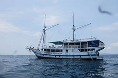 Papua tour adventures (indonesiaimpressiontour1) Tags: indonesia impression tour papua adventures