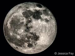 December 12, 2019 - The last full moon of 2019. (Jessica Fey)