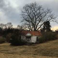 AZRE5341psd (LooknFeel) Tags: takenwithiphone iphone6 20191212 • abandoned farm tree house ruin