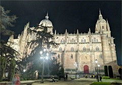 Catedral de Salamanca (Luisa Gila Merino) Tags: catedral nocturna árbol personas salamanca castillayleón arte arquitectura otoño noche monumento gente farola