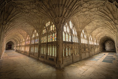 Gloucester Cathedral Cloisters (michael_d_beckwith) Tags: gloucester cathedral gloucestercathedral cathedrals church churches interior inside arch arches gothic gothical architecture architectural building buildings place places historic historical history old famous landmark landmarks pretty pritty beautiful corridor corridros passageway passage way 4k 8k uhd stock free public domain creative commons zero o photo photograph pic picture england english british european gloucestershire britain michaeldbeckwith michael d beckwith religion religious holy sacred abbey minster heritage tourism