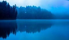Blue (andre.kirtz) Tags: see seelandschaft seeufer blau kalt türlersee zürich nebel