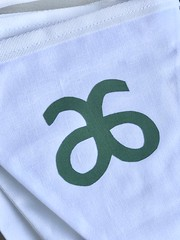 Photo of Arbonne Consultant bunting