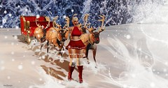 Are you ready? Jump in Santa! (axis.scorpia) Tags: christmas santa red white winter boots skirt gift deer snow snowflake no match hair horns fur top 12 days