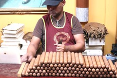 Hand-Rolled Cuban Style Cigar (Prayitno / Thank you for (12 millions +) view) Tags: calle ocho 8th eighth street little havana cuba town mia miami fl florida hand made rolled rolling art craft skilled cigar tobacco gift idea traditional tradition