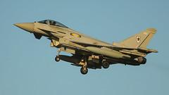 ZK366/366 TYPHOON 11sqn RAF (MANX NORTON) Tags: zk366366 typhoon 11sqn raf coningsby egxc eurofighter qra f35 lightning f15 eagle