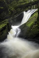 Peiran falls (Adam John Evans Photo) Tags: d810 nikon wales hafod hafodestate waterfall ceredigion river nature landscape longexposure