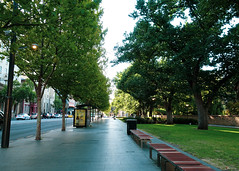 Last day of work (algrodrigues) Tags: day australia trees city sony camera adelaide