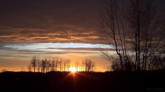 Pre-dawn; before the Clouds. (Steve InMichigan) Tags: sunrise sunriseglow sunrays morningsunrise cloudysky clouds cloudyovercast earlymorninglight canoneosm50 canonfl28mmf35lens fotasyfdfleosmlensadapter