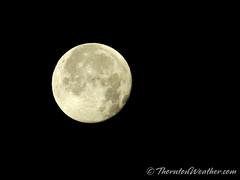 December 13, 2019 - The last full moon of 2019. (ThorntonWeather.com)
