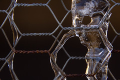 Wire and Ice (Hayseed52) Tags: wire ice freezing frozen alien spaceman