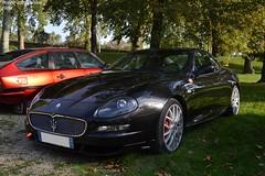 Maserati Gransport Coupé (Monde-Auto Passion Photos) Tags: voiture vehicule auto automobile cars maserati gransport coupé noir black sportive rare rareté rassemblement france montereaufaultyonne